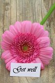 Get well card with pink gerbera daisy on wooden surface