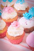 pic of sugarpaste  - delicious cupcakes dessert served for big party - JPG