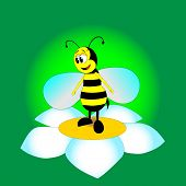 image of flying-insect  - Highly organized bee flying insect - JPG