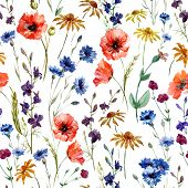 pic of wildflowers  - Beautiful watercolor vector pattern with wildflowers poppy - JPG