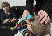 pic of lice  - Mother checking childs head for lice with a comb - JPG