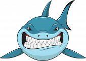 picture of great white shark  - Vector illustration - JPG
