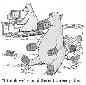 Different Career Paths