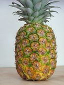 stock photo of uncut  - Fascinatingly beautiful on the outside the fresh uncut pineapple promises sweet juicy fruit within - JPG