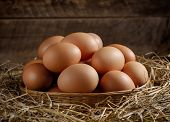 image of dry grass  - egg in a basket on the dried grass - JPG