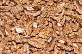 foto of diabetes mellitus  - Walnut kernels contain various elements that enhance memory and helps in the treatment of diabetes mellitus - JPG