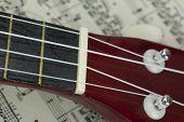 image of ukulele  - Close up of a ukulele rested on sheet music  - JPG