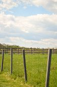picture of puffy  - Rural, Peaceful Farm Setting in Maryland featuring green grass, puffy clouds and blue skies. ** Note: Visible grain at 100%, best at smaller sizes - JPG