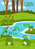 picture of swamps  - Colors for kids - JPG