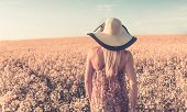 stock photo of rape  - Retro style photo of girl on yellow rape field - JPG