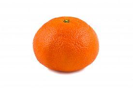 picture of tangelo  - Photo of ripen tangerine on white background - JPG