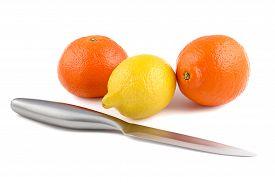 stock photo of tangelo  - Photo of chrome knife and lemon - JPG