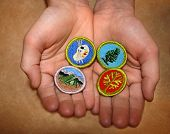 foto of boy scout  - boy scout merit badges earned by scouts - JPG