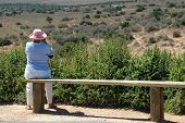 Senior Woman On Safari