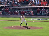 Pitcher Matt Cain