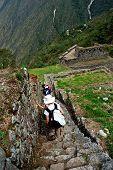 Ancient Inca Steps