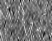 Zebra Fingerprint Short Fur