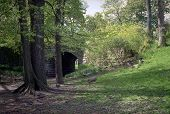 Spring Trees And Underpass, Olmsted Park