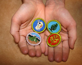 picture of boy scout  - boy scout merit badges earned by scouts - JPG