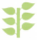 Flora Plant Halftone Vector Pictogram. Illustration Style Is Dotted Iconic Flora Plant Icon Symbol O poster