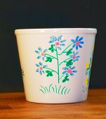 Flowerpot Painted By Hands