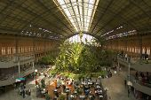 Green house inside Atocha Train Station