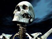 Bone Pose 20