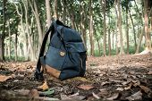 Backpack For Travel. Backpack On Fallen Yellow Foliage In The Forest. Blue Bag. Autumn Forest, Autum poster