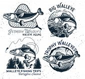 Vintage Walleye Fishing Emblems And Labels. Vector Illustration poster