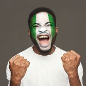 Face Of Young Screaming African-american Man Painted With Flag Of Nigeria. Football Or Soccer Team F poster