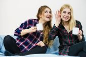 Two Female Friends Sitting Together On Sofa Chatting Talking Gossiping And Drinking Tea Or Coffee Ha poster