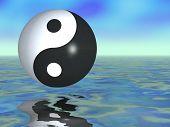 Yin Yang fantasía
