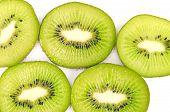Viele Segmente der Kiwi-Frucht