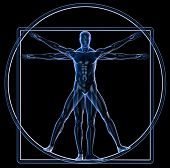 picture of leonardo da vinci  - Xray bronze Vitruvian man isolated on black background - JPG