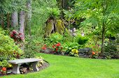 Pacific Northwest Garden