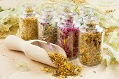 pic of sprinkling  - healing herbs in glass bottles herbal medicine - JPG