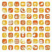 big color farm icon set