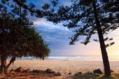 Lonely Person Strolls Along Burleigh Heads