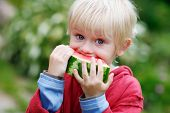 Melon Munching