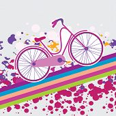 vector illustration of a bicycle