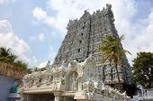 Suchindram temple. Kanniyakumari, Tamilnadu, Kerala, India
