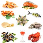 Seafood isolated on white