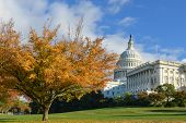 U.S. Capitol Building in Autumn - Washington DC, United States