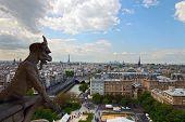 Chimera Looking At Paris