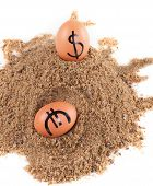 Image Of Big Eggs With Dollarand Euro  Signs On A Sand
