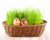 Funny Smiling Egg With Golden Euro  Egg In  Basket With Grass.
