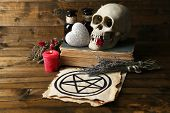 Conceptual photo of love magic. Composition with skull, dried herbs and candle on  dark wooden backg