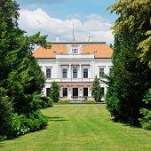 picture of manor  - Manor - JPG