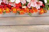 Beautiful Alstroemeria flowers on wooden table