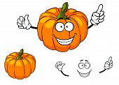 picture of cheeky  - Cheeky happy colorful orange cartoon pumpkin with a toothy smile and green stalk isolated on white - JPG
